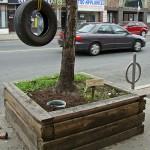 bentley-ball-outside-the-planter-boxes-01