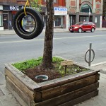 bentley-ball-outside-the-planter-boxes-02