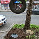 bentley-ball-outside-the-planter-boxes-03